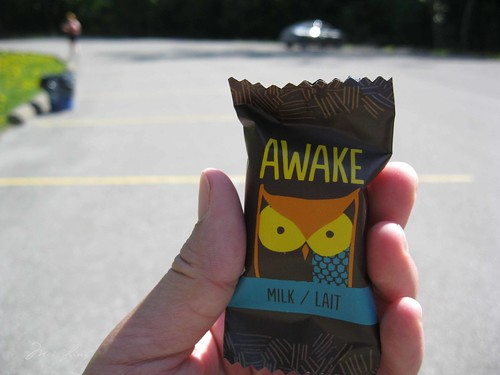 Awake Chocolate at the race