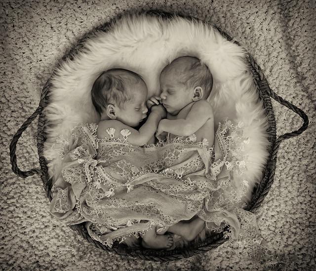 219A9915 copy Newborn twins