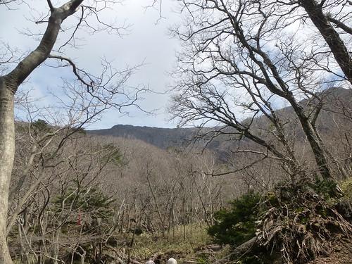 Co-Jejudo-Hallisan-Montée-Yeongsil (3)