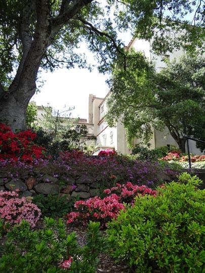 Hearst Castle gardens 02