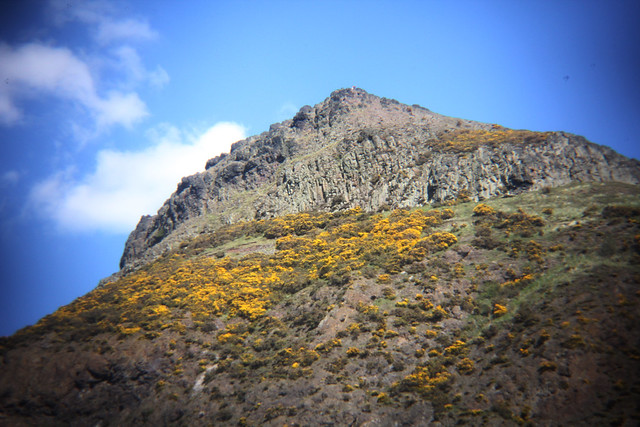 Arthur's seat in the sun 12