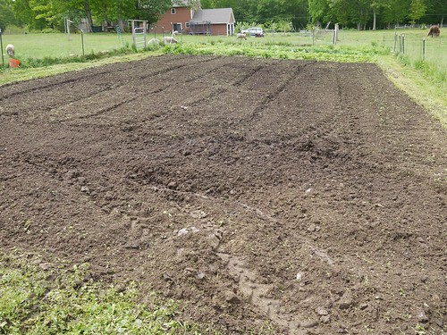 Freshly tilled garden