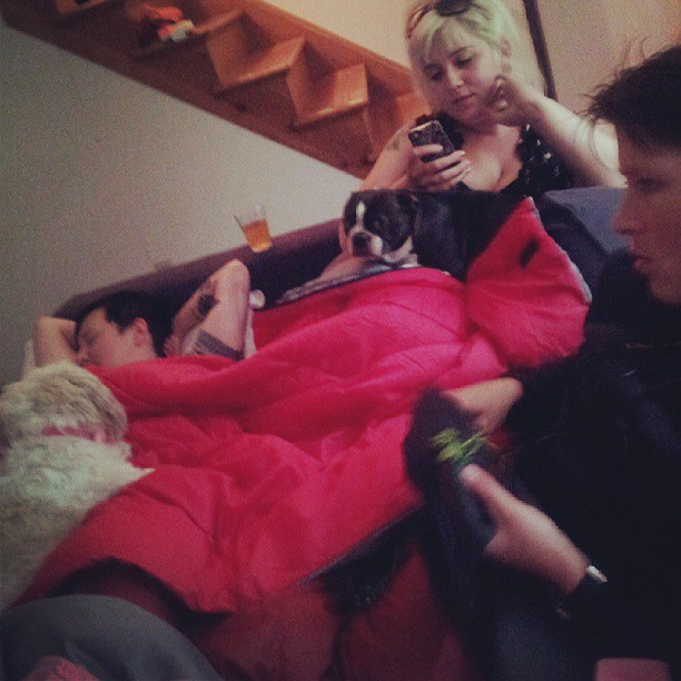Cuddle pile.
