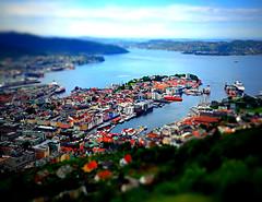 Mini Bergen.