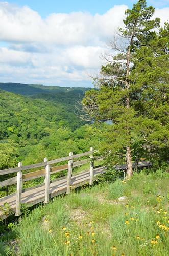 statepark landscape outdoors scenic missouri wildflowers lakeoftheozarks ozarks stateparks hahatonka camdencounty