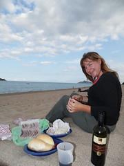Picnic Dinner on the Beach