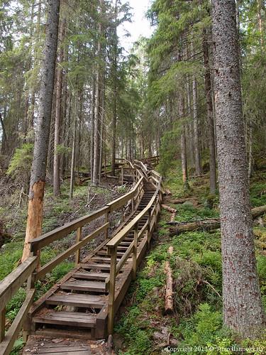 nature stairs walking nationalpark path olympus kansallispuisto helvetinjärvi helvetinjärvenkansallispuisto xz1