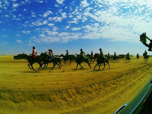 Dubai Endurance by aldoyh
