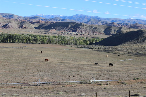 IMG_1860_Between_Riverton_WY_&_Dubois_WY