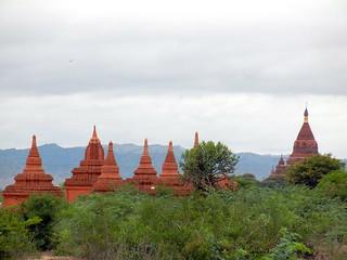 Bagan field of pagodas