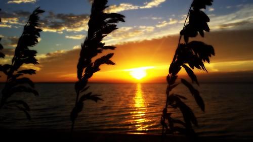 sunrise pensacola seaoats pensacolabay galaxys4