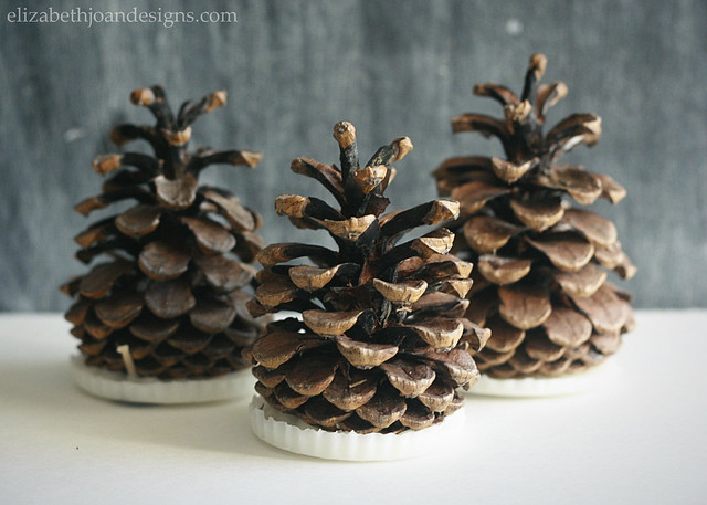 Pinecone Fire Starters 1
