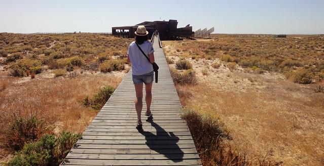 Ilha deserta - Algarve - Portugal