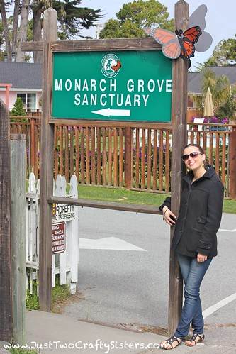 Monarch Grove Sanctuary