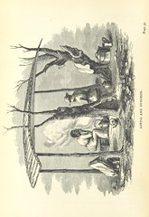 "British Library digitised image from page 56 of ""My African home; or, bush life in Natal when a young colony. 1852-7 ... Illustrated"""