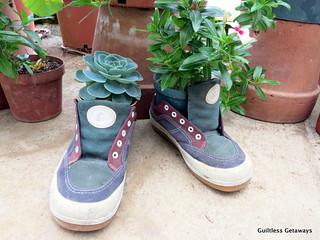 shoe-design.jpg