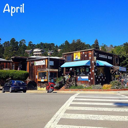 April- Cambria