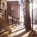 Winter light by Laurence Vagner