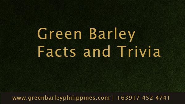 green-barley-powder
