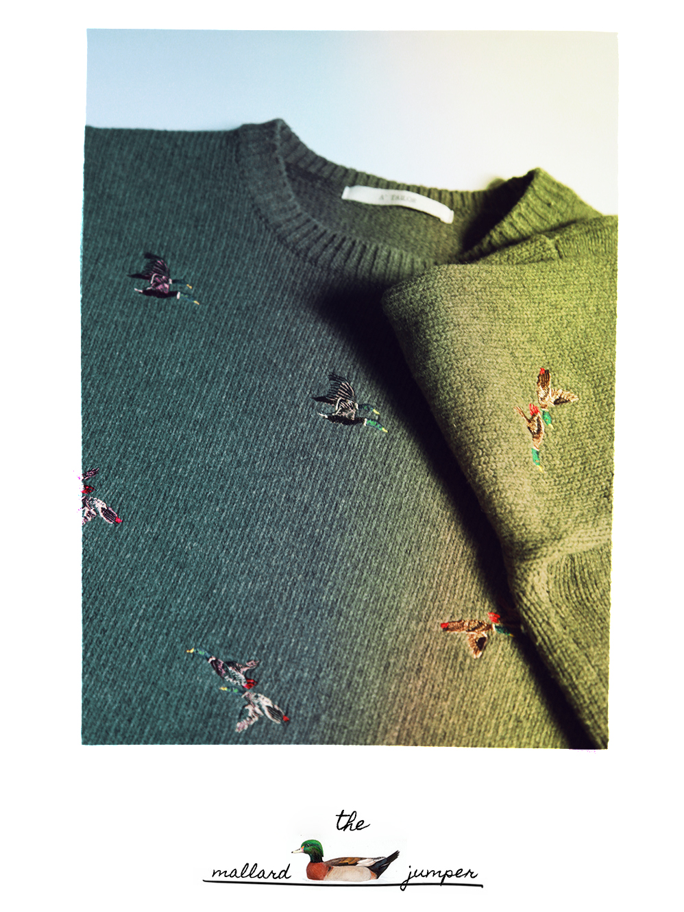 the mallard jumper