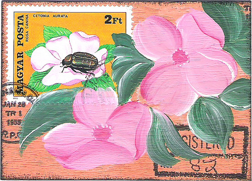 pink flowers and insect (traded)