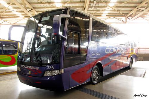 Cóndor Bus en Santiago | Busscar Vissta Buss LO - Scania / YU5572