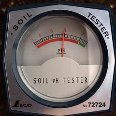 もう一つはpH5.9くらい。土を足したせいかちょっと酸性かな…有機石灰足しとこう
