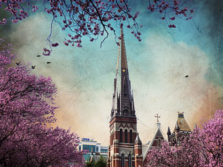 Spring series 2014