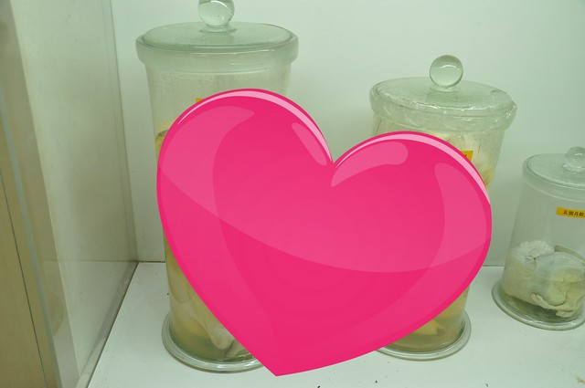 DSC_1123 heart