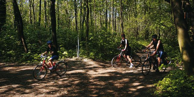 biking-viennaWoods