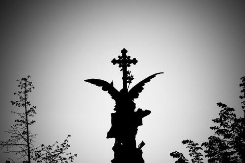 Emerging angel | Ángel emergente