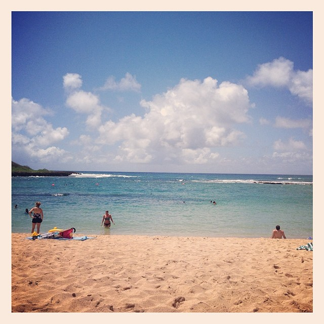 We drove up to Turtle Bay for the day, and we like it so much we might come back again tomorrow.