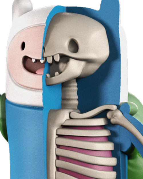 MightyJaXX × Jason Freeny XXRAY系列《探險活寶》阿寶 XXRAY Adventure Time Finn The Human