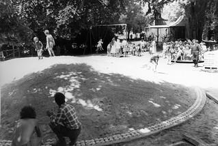 Botanic Gardens Playground, 22 December 1977