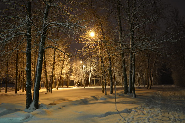 The cold nights of March