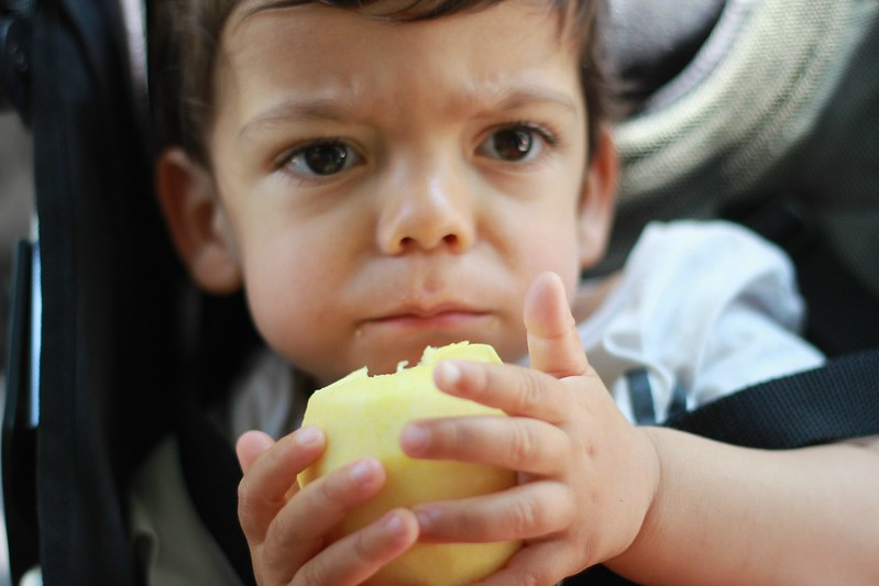 manuel e a maçã