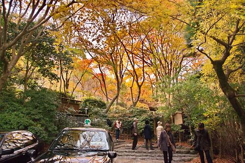 【写真】2012 紅葉 : 祇王寺/2021-09-05/IMGP7870