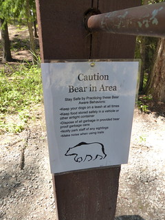 Bear in the area!