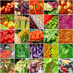 Vegetables Mosaic