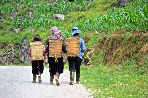 women on their way to the fields