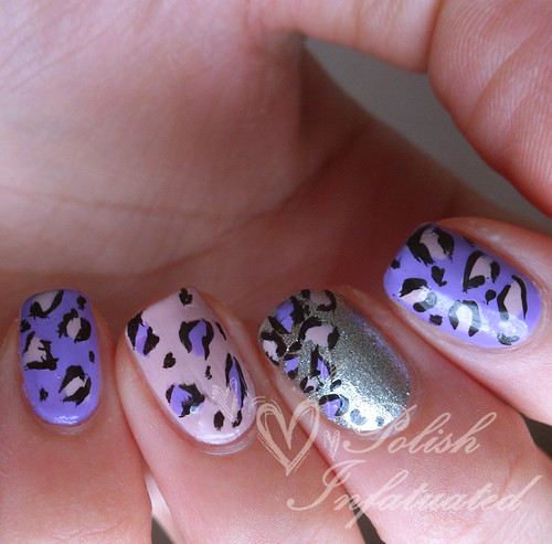 purple and pink leopard