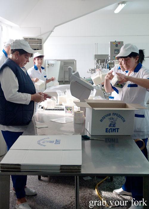 handpacking sirene dairy factory, dalbok izvor, bulgaria