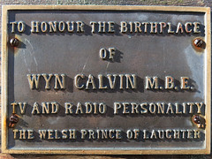 Photo of Wyn Calvin bronze plaque