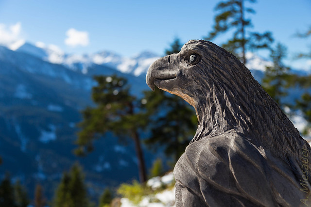 Wooden Eagle in Austria