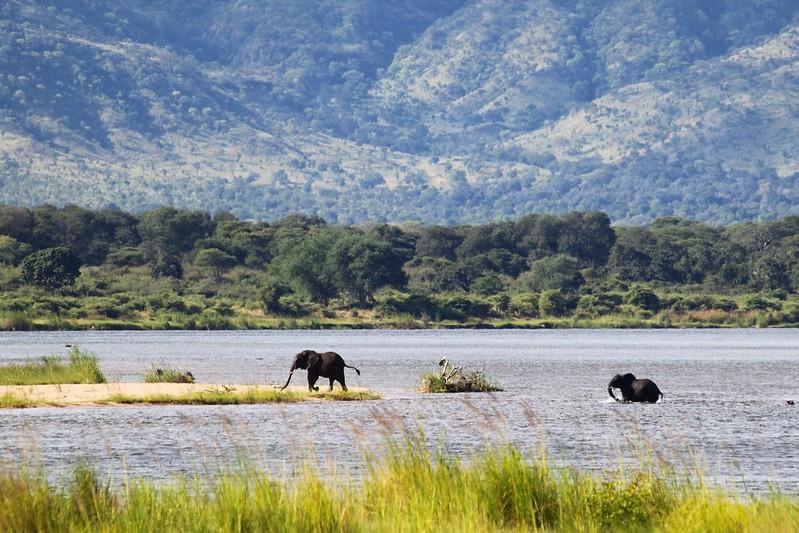 Le Zambèze - The Zambezi River
