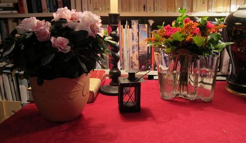 Kukkia marraskuussa by Anna Amnell