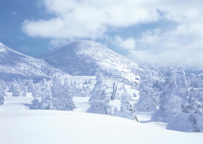 八甲田山的樹冰