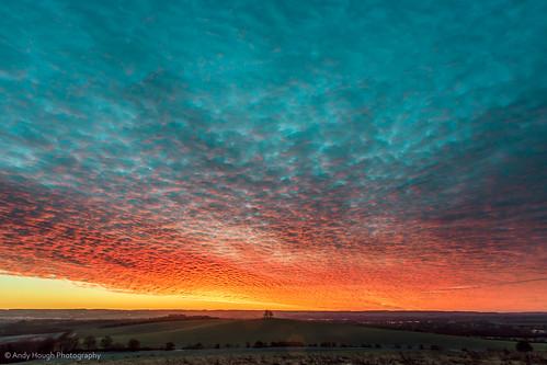 morning trees winter england sky clouds sunrise early unitedkingdom dramatic wallingford wittenhamclumps
