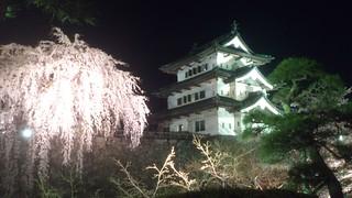 弘前城/夜