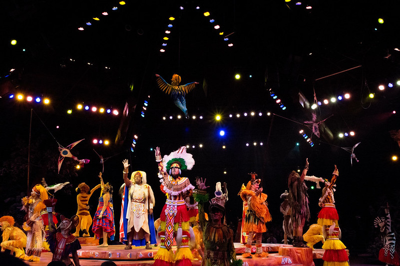 Disney Festival of the Lion King